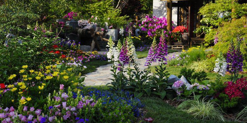 Tuin Inrichten Na Een Verhuizing? Zo Regel Je Het Snel!